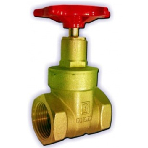 Gate and Globe Valves